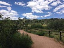 Ścieżka w parku z vegitation i niebieskim niebem Fotografia Stock