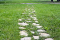 Ścieżka w trawie Obrazy Stock