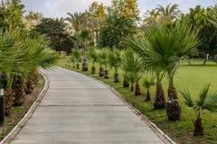 Ścieżka w turecczyzna parku Fotografia Royalty Free