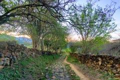 Ścieżka w Wiejskim Kolumbia zdjęcia stock