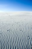 ścieżka wydm piasku Fotografia Stock