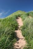 ścieżka wydm piasku Obraz Royalty Free