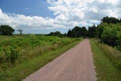 Ścieżka wzdłuż pola Zdjęcie Royalty Free
