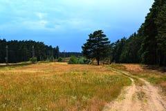Ścieżka wzdłuż toru szynowego Obrazy Royalty Free