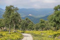 Ścieżka z kwiatami i korkowymi dębami prowadzi kasztel zdjęcie royalty free