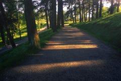 Ścieżka z pięknym światłem słonecznym w Pagasarri Obraz Royalty Free