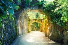 Ścieżka z skałami zdjęcia royalty free