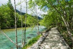 Ścieżka z zielonym jeziorem Zdjęcie Royalty Free