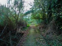 ścieżka zielona Obrazy Royalty Free