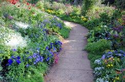 Ścieżki cewienie w kwiatu ogródzie Zdjęcie Royalty Free