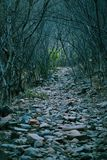 Ścieżki mniej podróżować obok Zdjęcia Royalty Free