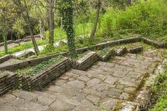 Ścieżki z schodkami w parku Zdjęcie Royalty Free