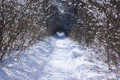ścieżki zima Zdjęcia Royalty Free