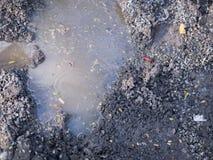 Ściek i odpady w stawowym, złym środowisku ludzką społecznością, Obraz Stock