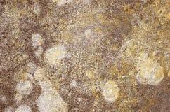 Ścienna tekstura zdjęcia royalty free