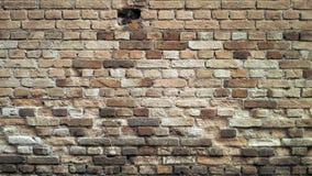 Ścienne cegły Obraz Royalty Free