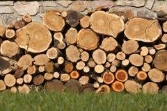 ścienny drewno Obraz Stock