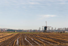 Ścierniskowy pole w jesieni z kałużami woda Zdjęcie Stock