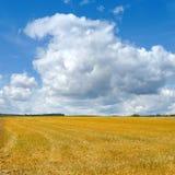 Ścierniskowy pole z zbliżać się chmury obraz royalty free
