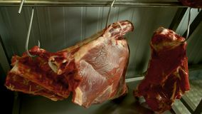 Ścierwa surowej wołowiny mięsny obwieszenie na haczykach zdjęcie stock