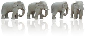 ścinku słonia ścieżka zdjęcia stock