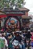 ścisłe jak jest czarowali krowy robią durbar jedzeniu szczególnie hinduism hindus jakkolwiek ind Kathmandu zabity życie życia mog Obrazy Stock