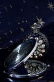 ścisły lustro Zdjęcie Royalty Free