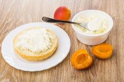 Ściska z kremowym serem w talerzu, słój z serem, morele Obrazy Royalty Free