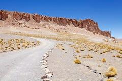 Ślad i geological monolity blisko do Salar Tara, Chile zdjęcie royalty free