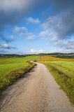 Ślad w zielonym polu, Tuscany, Włochy Fotografia Stock