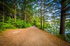 Ślad wzdłuż Winnisquam jeziora przy Ahern stanu parkiem w Laconia, Ne Zdjęcie Royalty Free