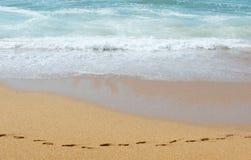 Ślada na piasku wzdłuż oceanu Obrazy Stock