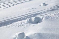 Ślada od narciarstwa na śniegu Fotografia Royalty Free