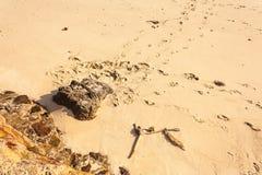 Ślada w piasku zdjęcie stock