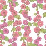 Ślazu kwiatu koloru graficznego nakreślenia tła ilustraci bezszwowy deseniowy wektor Obraz Stock