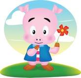 śliczna świnia Obraz Royalty Free