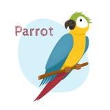 Śliczna ara, aronu papuzi obsiadanie na gałąź, tropikalny, egzotyczny ptak, Obraz Royalty Free