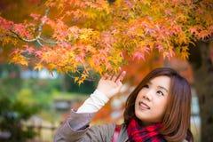 Śliczna Azjatycka Tajlandzka dziewczyna jest wzruszającymi czerwonymi liśćmi w jesień sezonu abo Obrazy Stock