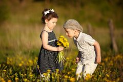 Śliczna chłopiec i dziewczyna na lata polu Obraz Royalty Free