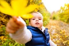 Śliczna chłopiec outside w naturze, pogodny jesień dzień Zdjęcia Stock