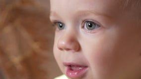 Śliczna chłopiec chłopiec patrzeje attentively przy jeden punktem Uśmiechnięty i zdziwiony przy co zobaczył zbiory