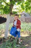 Śliczna chłopiec pomaga w jarzynowym ogródzie Zdjęcie Stock