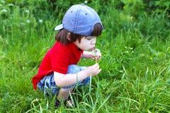 Śliczna chłopiec z blowball zdjęcie royalty free