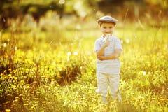 Śliczna chłopiec z dandelions Obraz Royalty Free