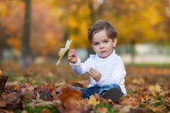 Śliczna chłopiec z koszem owoc w parku Fotografia Stock