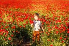 Śliczna chłopiec z makowym kwiatem na maczka polu na lata eveni Obrazy Stock