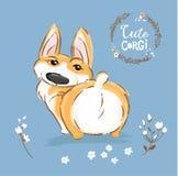 Śliczna Corgi psa szczeniaka plecy ogonu wektoru ilustracja Ładnego Fox zwierzęcia domowego charakteru Plenerowy plakat Mały Szcz ilustracji