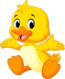 Śliczna dziecko kaczka podnosił swój skrzydła Fotografia Royalty Free