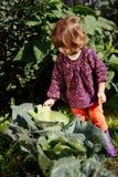 Śliczna dziewczyna w ogródzie z kapustą Obrazy Stock