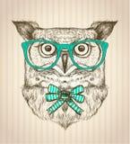 Śliczna karta z ręka rysującą modniś sową ubierał w zielonych szkłach Fotografia Stock